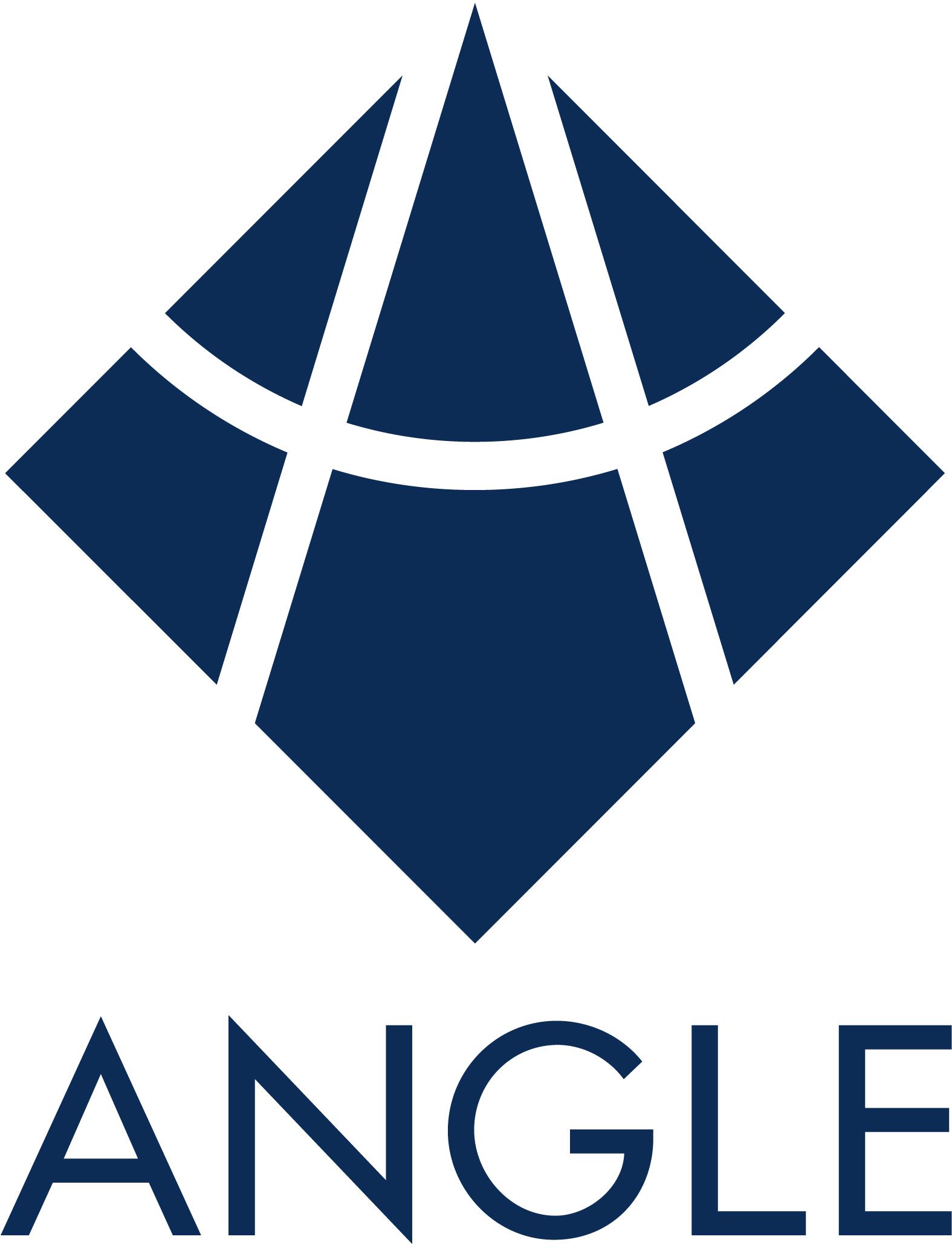 ANGLE logo.jpg